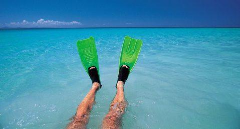 Grande Anse des Salines Beach, Matinique